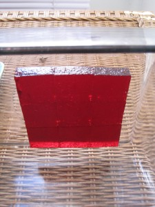 cranberry pate de fruit 2
